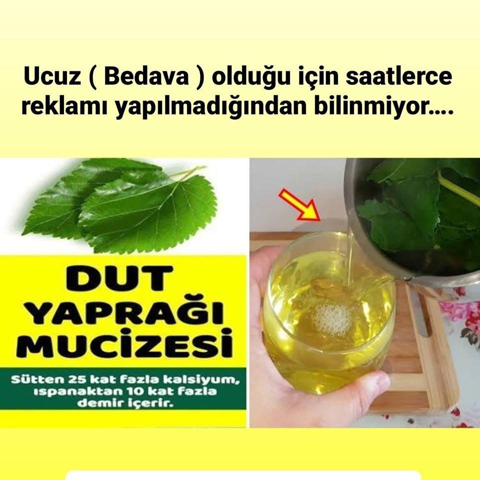 Burnumuzun dibindeki mucize Dut yaprağının faydaları