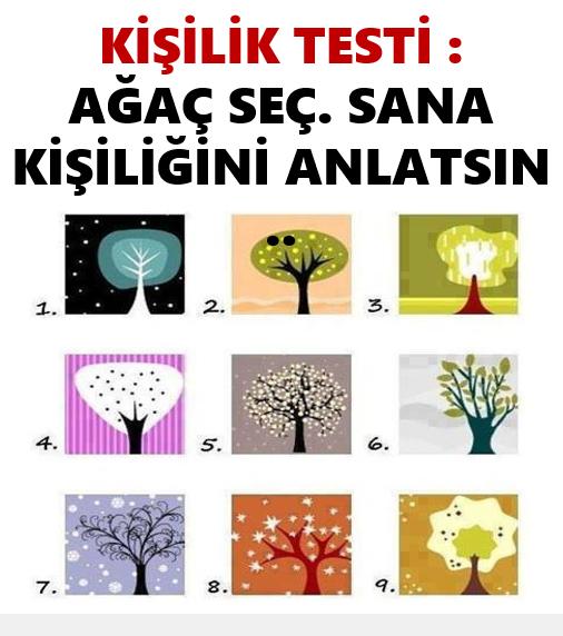 Bir ağaç seç ve kim olduğunu bul
